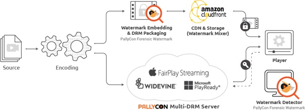 Forensic Watermarking with Multi-DRM